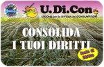 TESSERE U.DI.CON